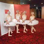 Brainline Swan Lake Ballet