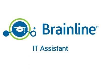 IT Assistant